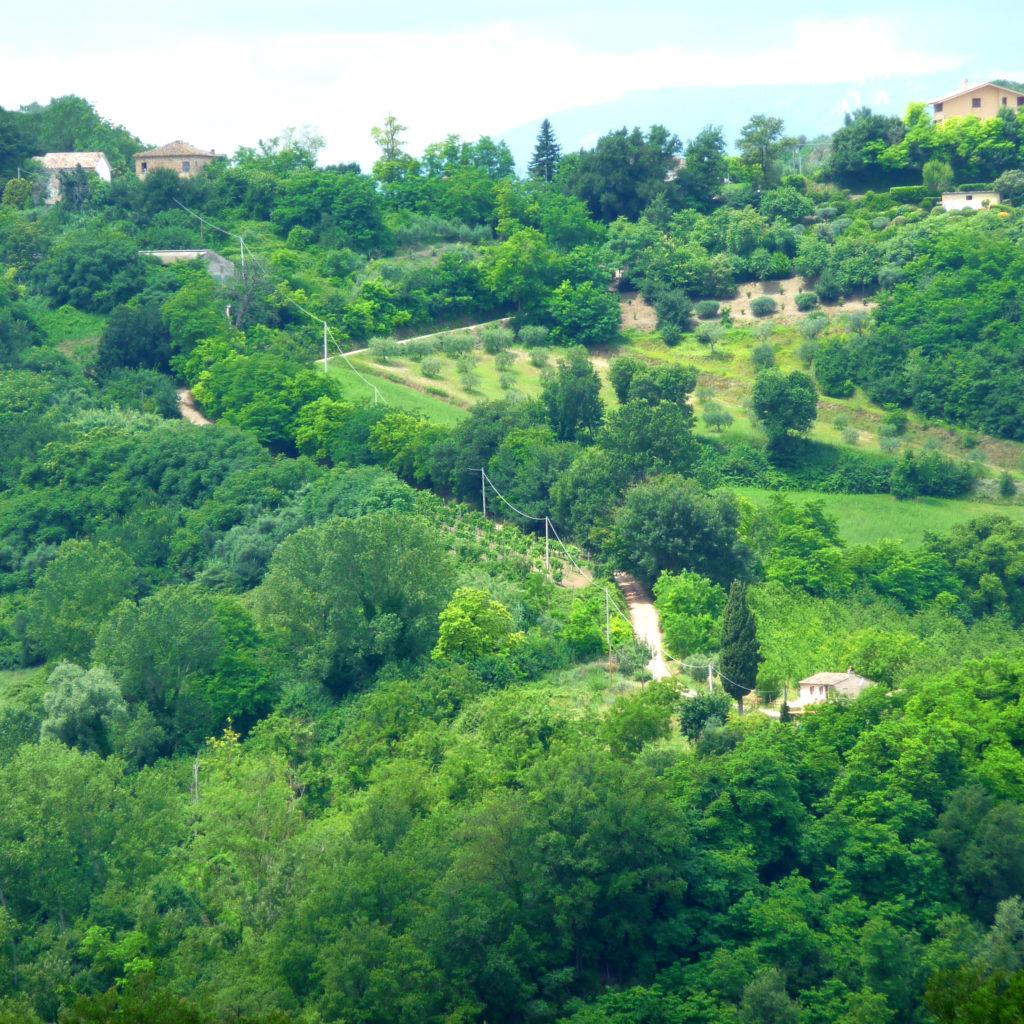 Casa Cipresse gefilmd
